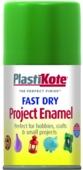 PLASTI-KOTE FAST DRY ENAMEL GARDEN GREEN (104-S) 100MLS