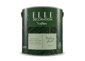 Crown Elle Decoration Flat Matt Trailing Plant 323 2.5l